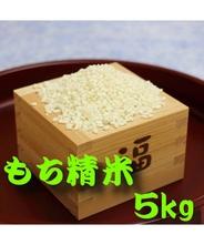 新商品 送料無料 お米 もち米(たかやまもち) 5kg 岐阜県産 宅配