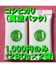 お米 コシヒカリ (真空パック280g、2パック入)[お米ギフト 真空包装] 岐阜県産 メール便対応