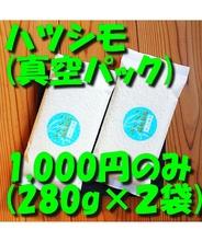 お米 ハツシモ (真空パック280g、2パック入)[お米ギフト 真空包装] 岐阜県産 メール便対応
