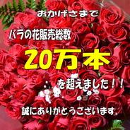 送料無料 !薔薇*赤バラ花束 60本 還暦