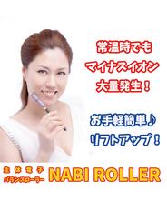 【送料無料】生体電子バランスローラー ナビローラースリム