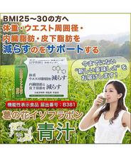 CDグローバルの葛の花イソフラボン青汁 1箱30本入