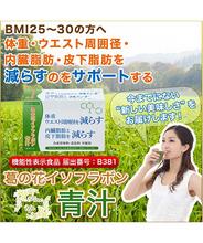 葛の花 イソフラボン青汁(3g×30包入)