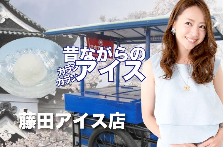 藤田アイス店