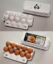 白たまご10個&豊卵10個お得セット(破損保障4個含む)