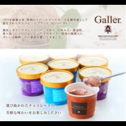 【送料無料】ベルギー王室御用達ブランド Galler(ガレー)監修 プレミアムアイス セット(12個)