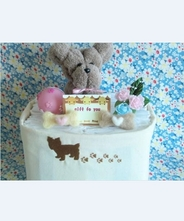 【犬・おむつケーキ】ペットシーツケーキ・お散歩トートバックセット女の子(ブラウン)★送料無料★