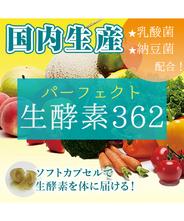 【送料無料】生酵素カプセル パーフェクト生酵素362
