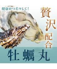 【送料無料】贅沢配合牡蠣丸